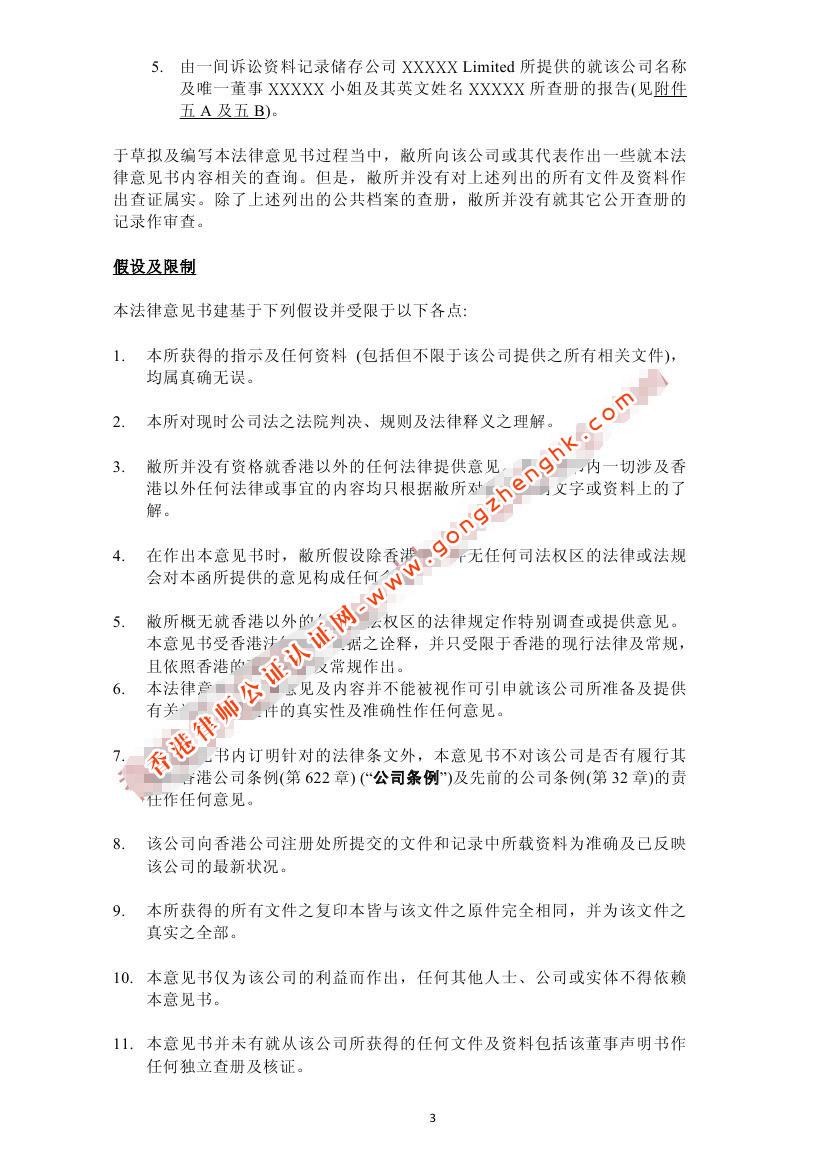 香港公司法律意见书样本